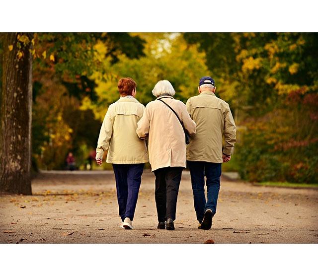 L'accompagnement des personnes âgées dépendantes
