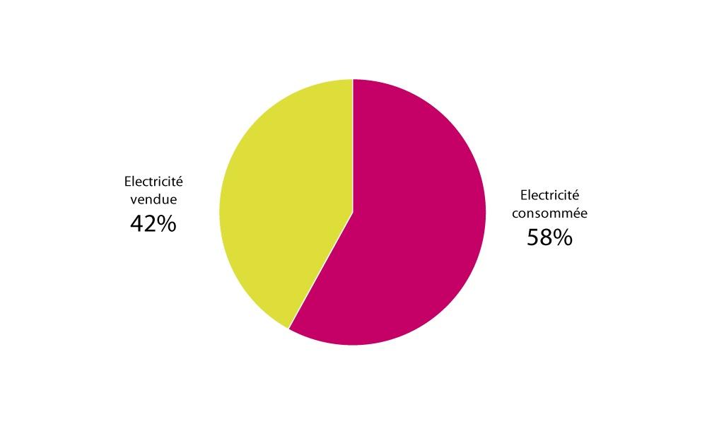 Répartition de la consommation et la vente d'électricité